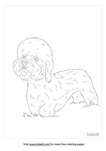 dandie-dinmont-terrier-coloring-page