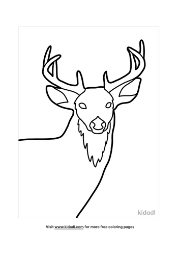 deer coloring pages-3-lg.png