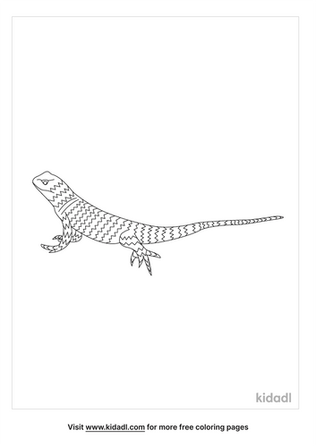 desert-spiny-lizard-coloring-page.png