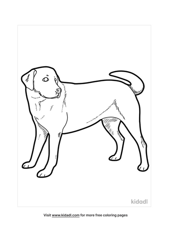dog coloring pages for adults-4-lg.png