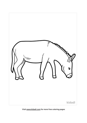 donkey coloring pages-5-lg.png