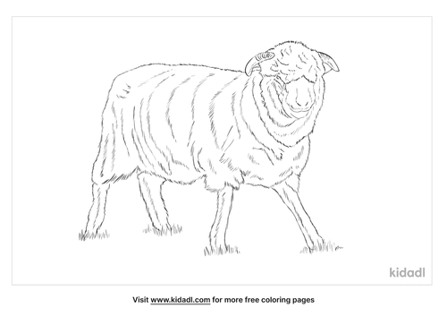 dorset-coloring-page