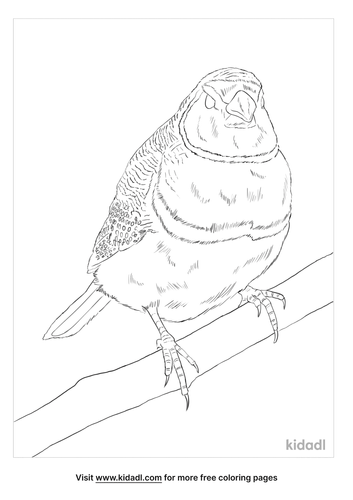 double-barred-coloring-page