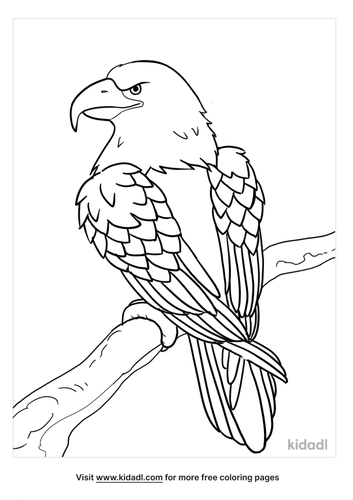 eagle coloring pages-4-lg.png