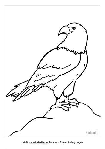 eagle coloring pages-5-lg.png