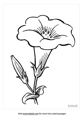 easter-lily-coloring-page-3-png.png