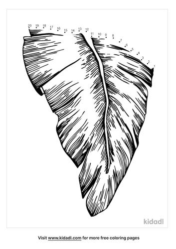 easy-palm-leaf-dot-to-dot