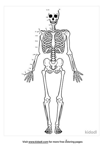 easy-skeleton-dot-to-dot