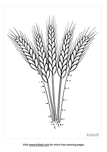 easy-wheat-dot-to-dot
