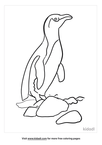 emperor-penguin-coloring-page-4.png