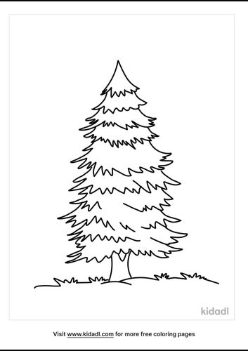 evergreen-tree-coloring-pages-2-lg.png