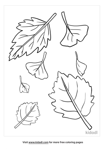 fall leaves coloring pages-2-lg.png