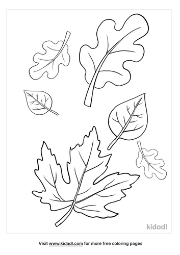 fall leaves coloring pages-3-lg.png