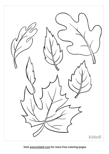 fall leaves coloring pages-5-lg.png