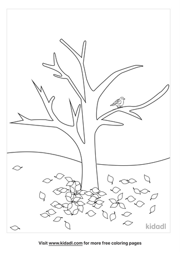 fall-tree-coloring-pages-1-lg.png