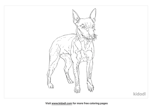 feist-dog-coloring-page