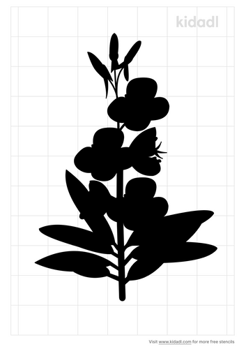 fireweed-stencil.png