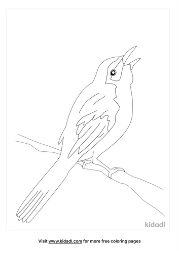 florida-coloring-pages-3-lg.png