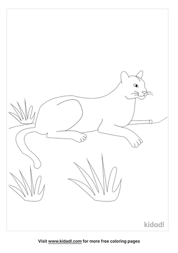 florida-coloring-pages-4-lg.png