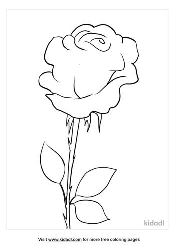 flower outline-2-lg.png