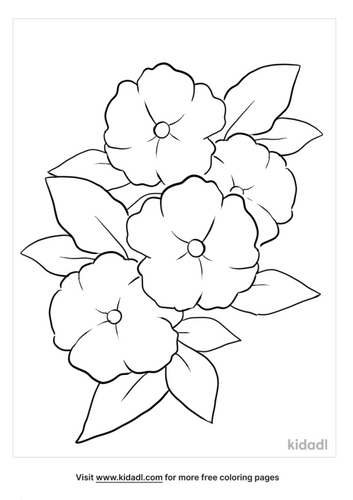 flower outline-4-lg.png