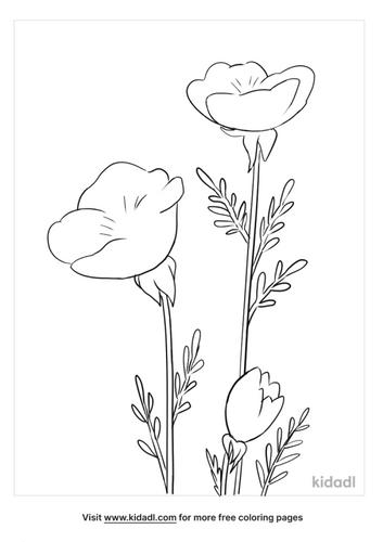 flower outline-5-lg.png