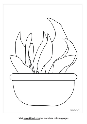 flower-pot-coloring-pages-2-lg.png