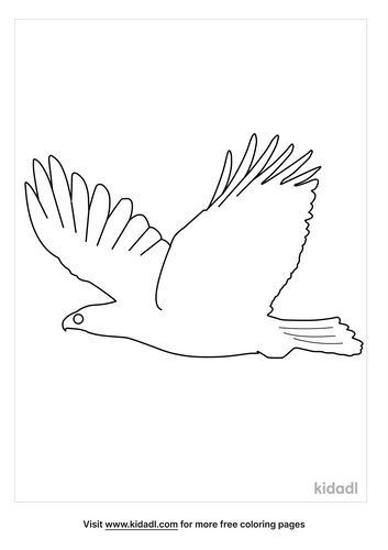 flying-bird-coloring-pages-4-lg.png
