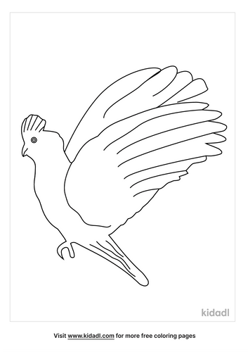 flying-cockatoo-coloring-pages-1-lg.png