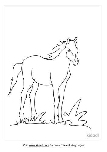foal-coloring-pages-2-lg.png