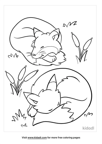 fox coloring pages_4_lg.png