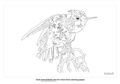 frilled-coquette-coloring-page
