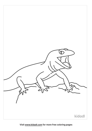 gecko-coloring-pages-2-lg.png