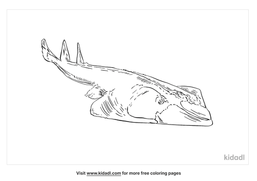 giant-guitarfish-coloring-page