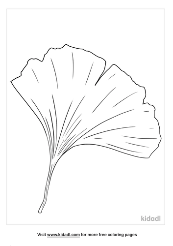ginkgo-leaf-coloring-pages.png