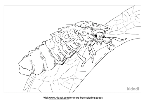 glow-worm-coloring-page