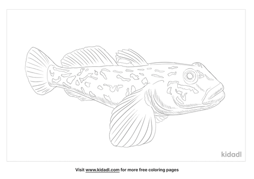 goby-coloring-page