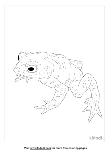 golden-toad-coloring-page