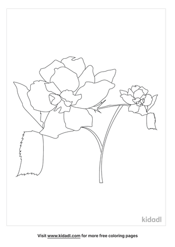 gothic-flower-coloring-page.png