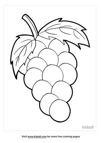grapes coloring page_4_lg.png