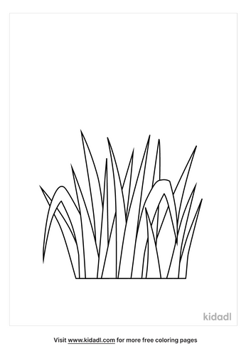 grass-coloring-pages-3-lg.png