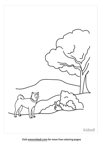 grassland-coloring-page-1.png