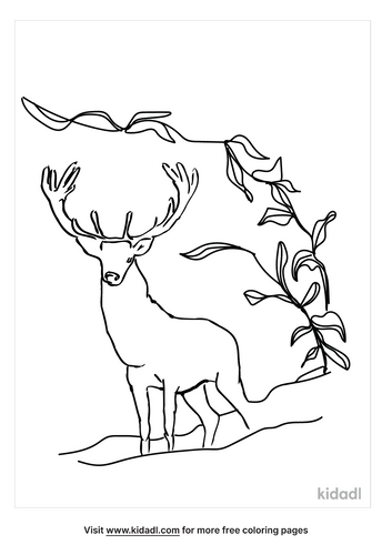 grassland-coloring-page-2.png