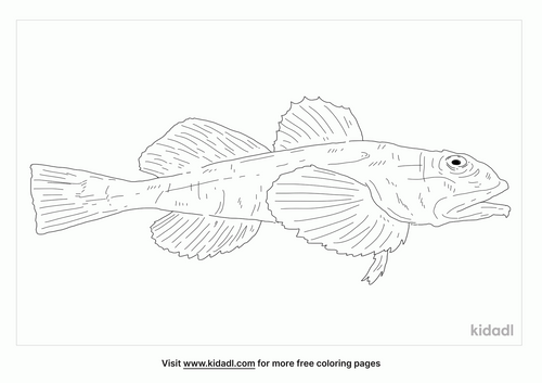 great-sculpin-coloring-page