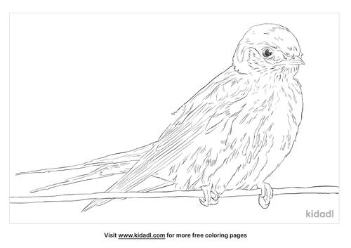 greater-striped-swallow-coloring-page
