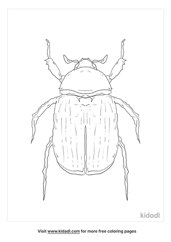 green-scarab-beetle-coloring-page