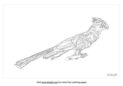 grey-go-away-bird-coloring-page