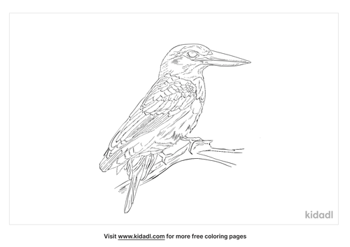 grey-headed-kingfisher-coloring-page