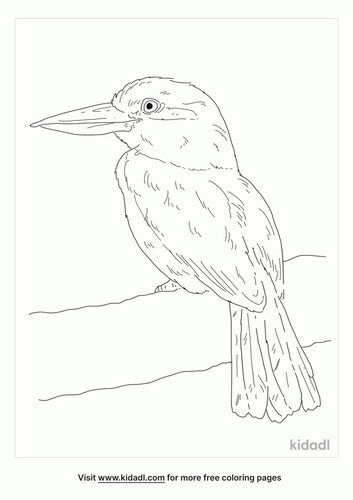 guam-kingfisher-coloring-page