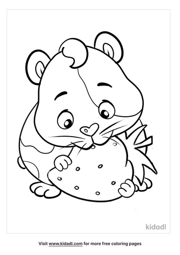 guinea pig coloring pages_2_lg.png